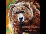 1-Animal-Grizzly Bears
