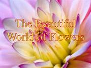 The Beautiful World of Flowers