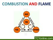 Combustion and fuel class 8(darpan)(Mayur)