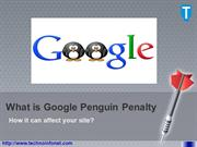 What Is Google Penguin Penalty and How It Can Affect Your Site