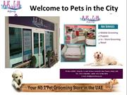 Pet service in Dubai, Mobile Pet Grooming, Dubai Pet Sitting service