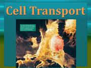 Cell Transport_2014_HonorsBio
