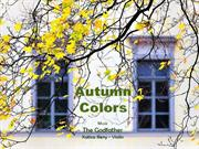 1-Autumn 12 Colors-Godfather-violin