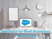 Salesforce for Small Businesses - Pros and Cons