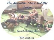 The Australian Shark and Ray Centre- Port Stephens