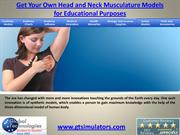 Get Your Own Head and Neck Musculature Models for Educational Purposes