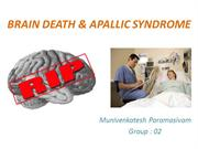 brain death and apallic syndrome