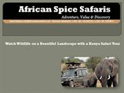 Watch Wildlife on a Beautiful Landscape With a Kenya Safari Tour