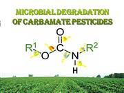 Biodegradation of Carbamate Insecticides