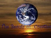 The Beauty of Creation