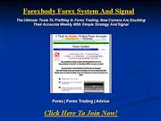 Forexbody Forex System And Signal