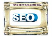 The Best Seo Service India