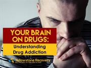 Your Brain on Drugs: Understanding Drug Addiction