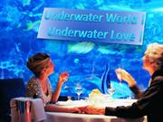 Underwater World, Underwater Love