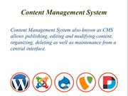 Content Management System for Business Websites | Burgeon Software