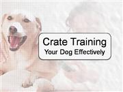 Crate Training Your Dog Effectively