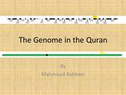 The X Chromosome in the Quran
