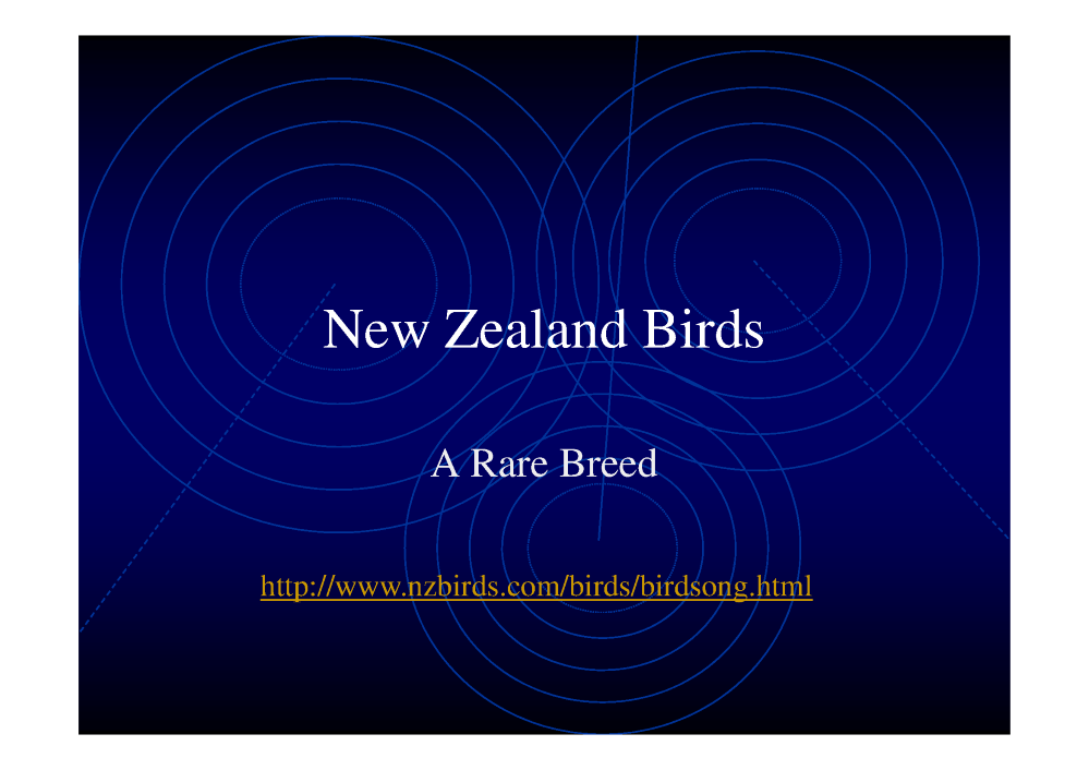 Nz birds powerpoint presentation authorstream nz birds powerpoint presentation toneelgroepblik Image collections