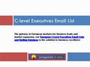 C-Level Executives Mailing List
