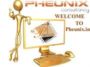 pheunix.in january_2015