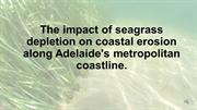 The impact of seagrass depletion on coastal erosion