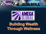 Amega Business Presentation Aug 2009