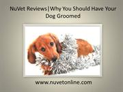 NuVet Reviews | Why You Should Have Your Dog Groomed