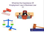 What Are the Importance Of Employment Law in Business Law
