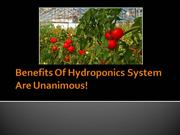 Benefits Of Hydroponics System Are Unanimous!
