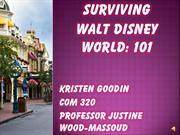 Surviving Walt Disney World