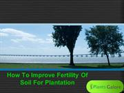 How To Improve Fertility Of Soil For Plantation - Plants Galore Online