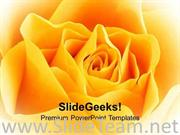 YELLOW ROSE BEAUTY POWERPOINT TEMPLATE