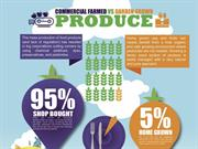 A Comparison between Commercially Farmed and Home Grown Produce