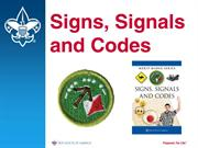 Signs, Signals and Codes Merit Badge
