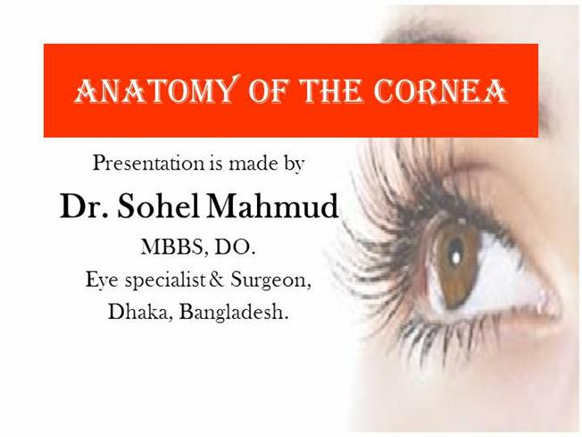 Anatomy Of Cornea Of Dr Sohel Mahmud Authorstream