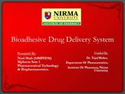 Bioadhesive Drug Delivery System - Neel