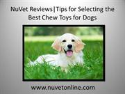 NuVet Reviews | Tips for Selecting the Best Chew Toys for Dogs