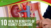 Top Health Benefits of Kidney Cleansing and Ways to Cleanse Kidneys