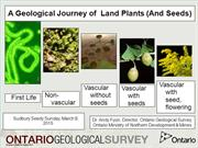 The Geological Journey of Plants by Andy Fyon