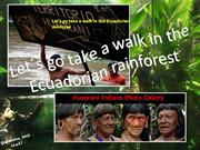 Let's go take a walk in the Ecuadorian rainforest