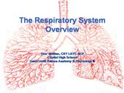 The Respiratory System overview