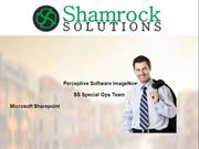 Choose Shamrock Solutions for Sharepoint Migration