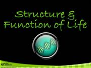 064 Structure & Function