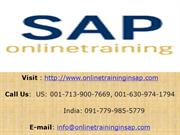 SAP ABAP Training Course Online and Placement - Online Training in SAP
