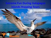Extreme Fun During Galapagos Islands Hopping Tours