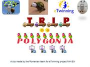 Movie - A trip to Polygonia Land