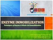 Enzyme and Cell Immobilization Techniques ppt by easybiologyclass