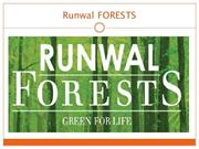 Runwal FORESTS 1