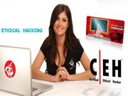 ECCouncil  312-50v8 Certified Ethical Hacker v8