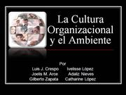 POWER POINT LA CULTURA ORGANIZACIONAL Y EL AMBIENT